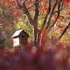 秋の妖怪ポスト