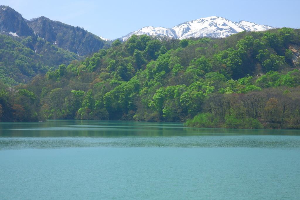 入畑ダム湖・春(2)