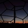 甲羅から見える空