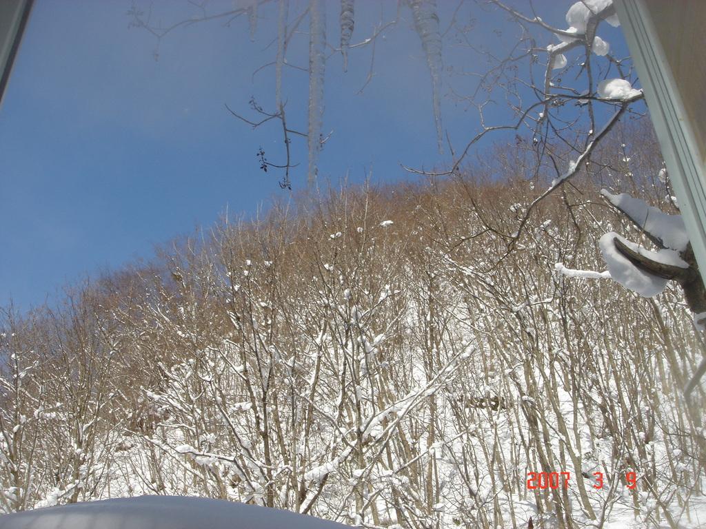 冬の八幡平