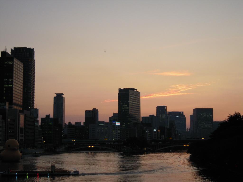 夕日とアヒル