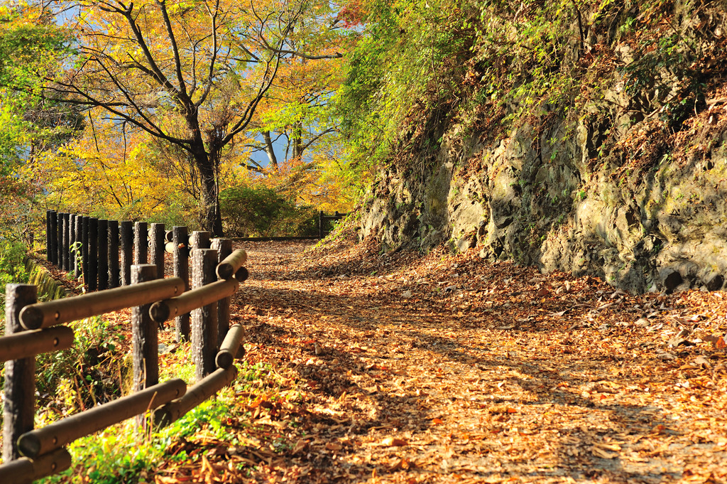秋の奥多摩