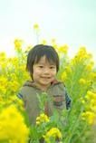 菜の花畑の僕。