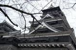 熊本城本丸