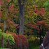 111023盛岡城跡公園 (9)