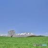 170507小岩井農場