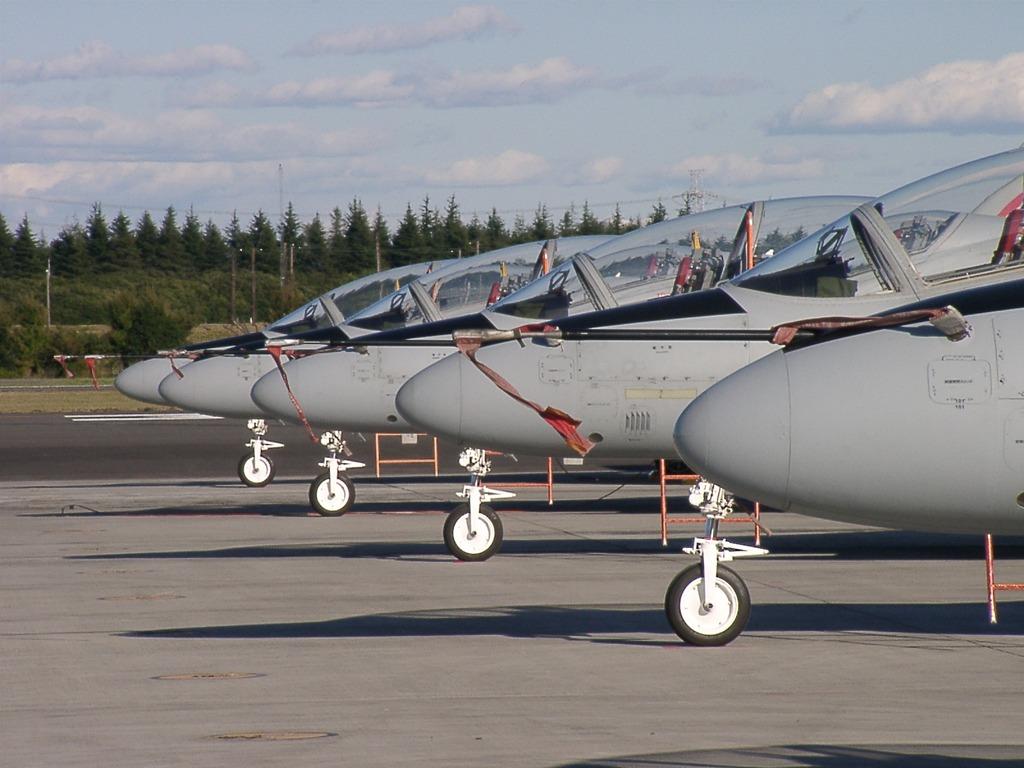 入間航空祭 T-4 整列駐機