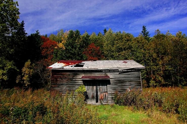 秋の色 10