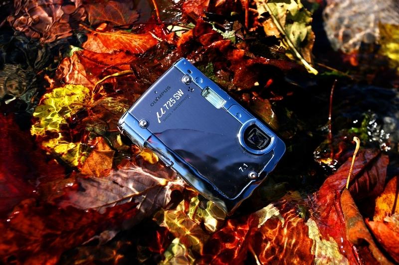 秋の色 09