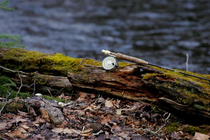 ロッドと朽木