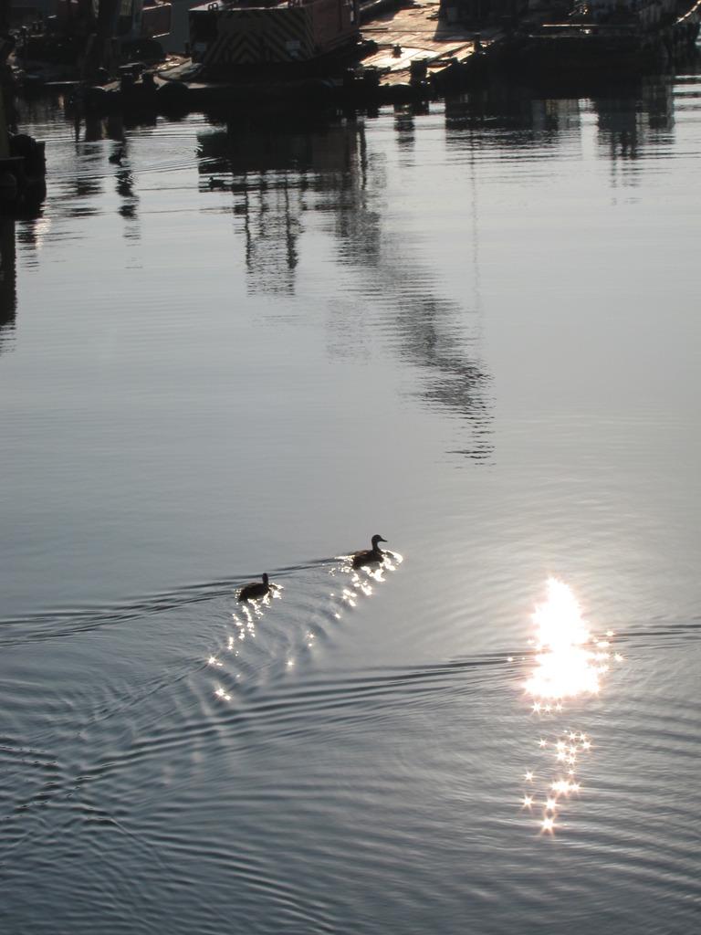 二人旅、朝日を浴びて・・・