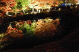 ライトアップされた紅葉と湖畔に写る紅葉