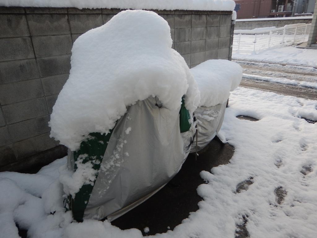 2018/01/23の雪景色2