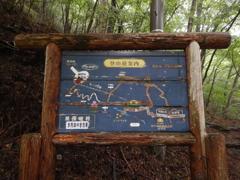 利平茶屋森林公園3