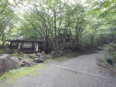 利平茶屋森林公園2