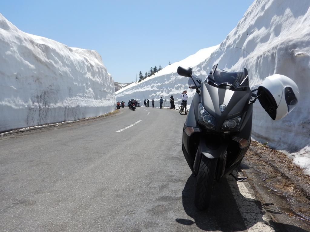 志賀草津道路 雪の回廊1