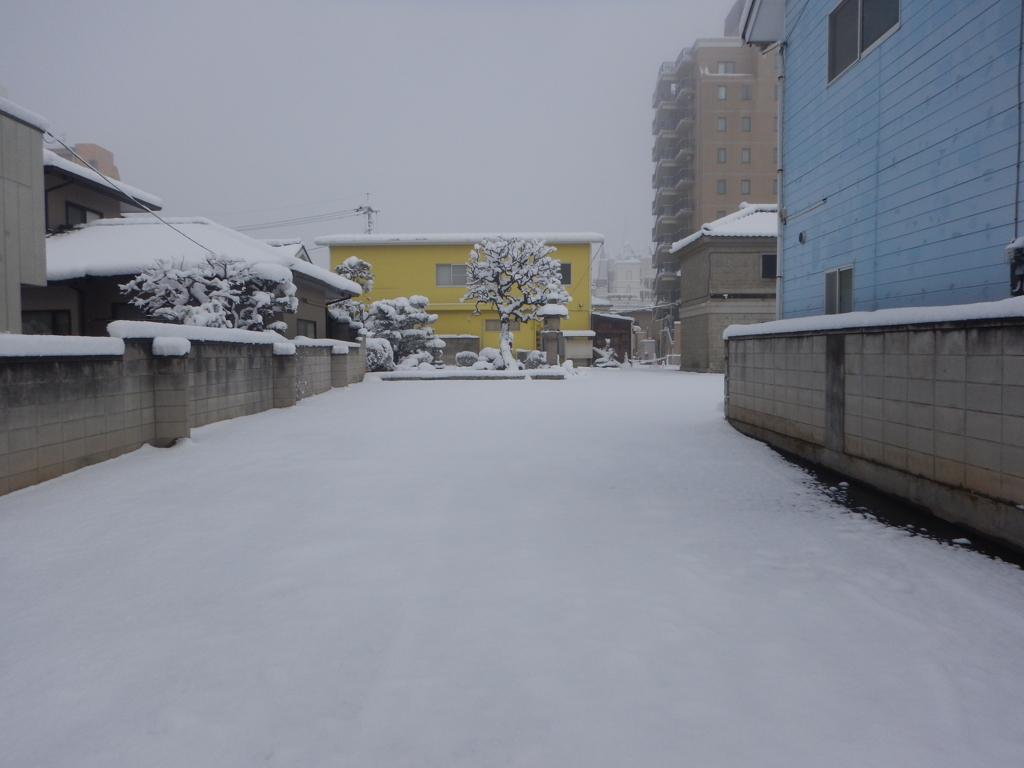 2018/01/23の雪景色3