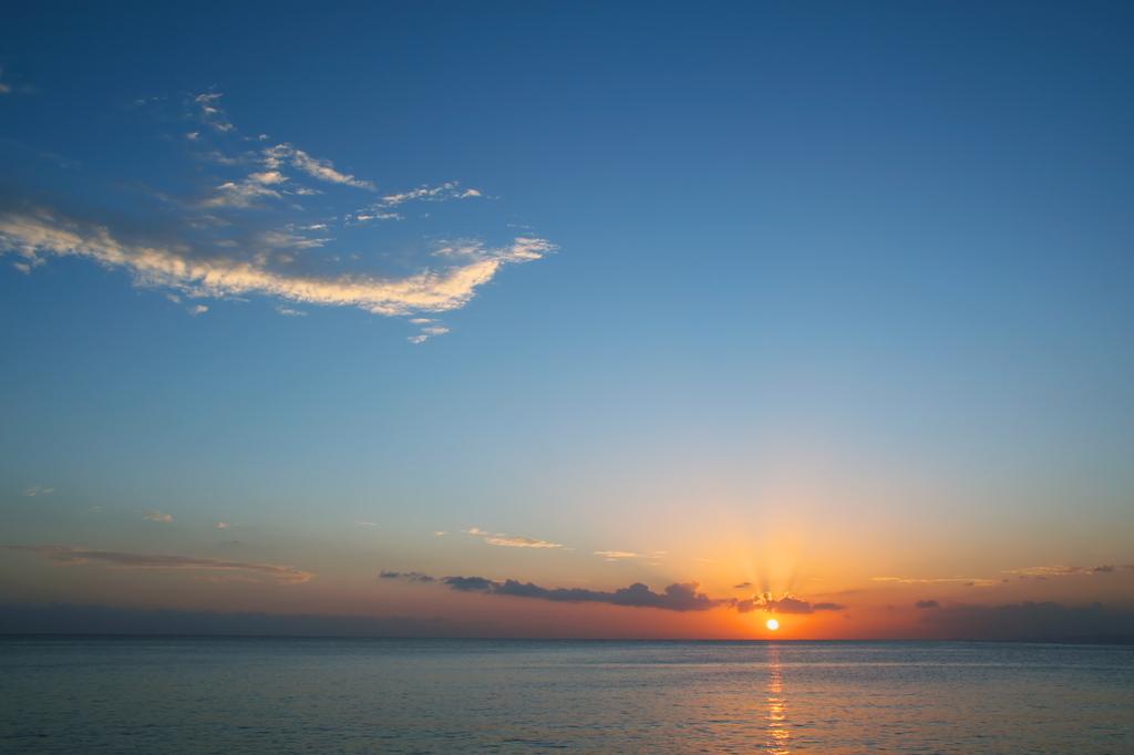 夕日を浴びる龍