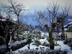 また雪景色