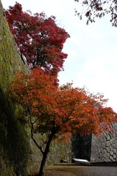 岡城址の秋