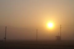 早春の朝霧