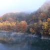 朝靄の紅葉
