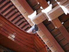 新しい屋根
