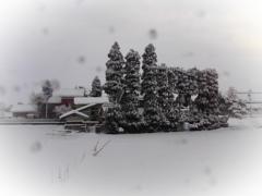 散居村の雪景色