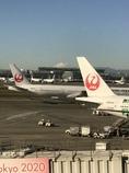 鶴丸と富士山