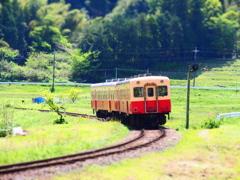 小湊鉄道 春