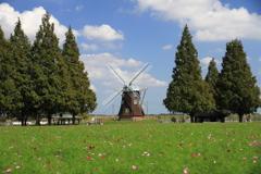 秋の青空、風車とコスモス