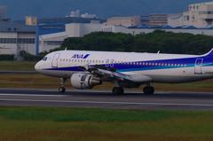 ANA Airbus 320 Landing(Slast Reverser)