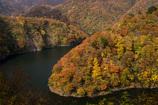 晩秋の渓谷Ⅳ