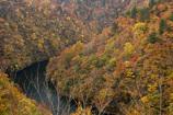 晩秋の渓谷Ⅲ