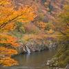 山形県赤芝峡