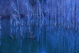 静寂を楽しみ湖畔を歩く