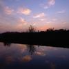 日光川の夕暮れ