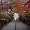 達磨寺の階段