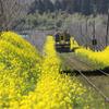 いすみ鉄道2