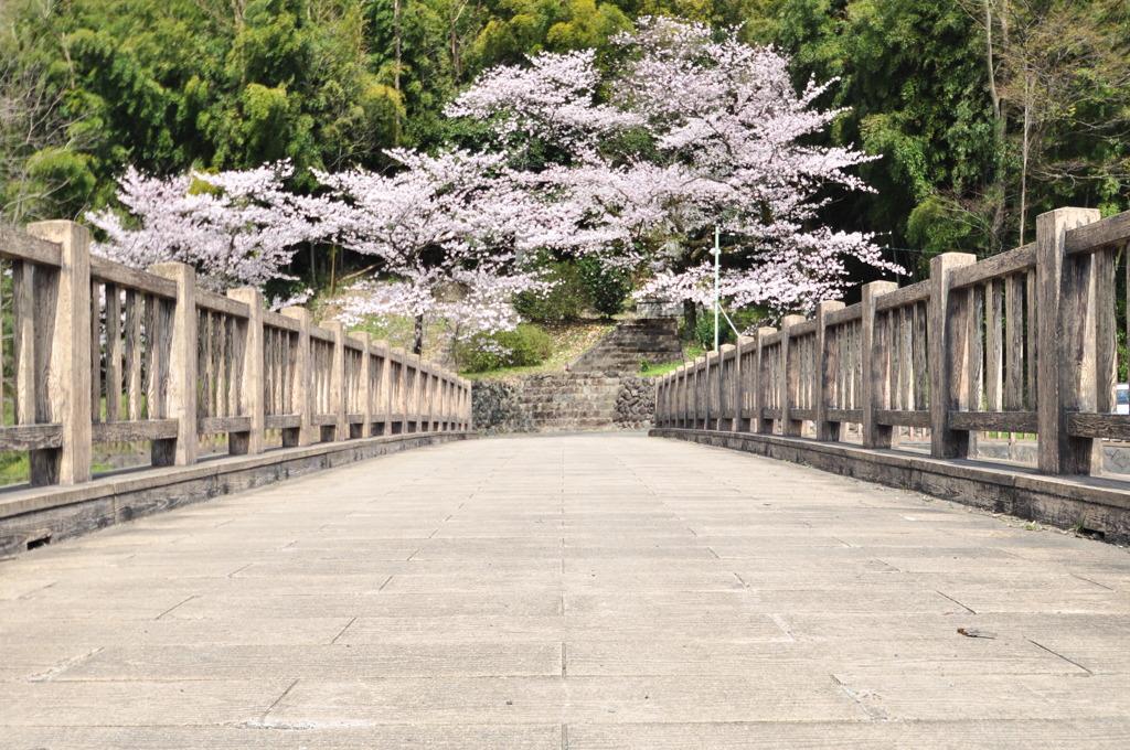 橋の向こうに