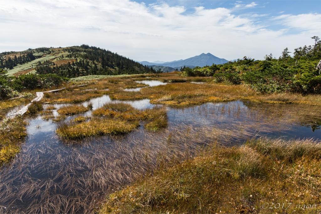 池塘を渡る風