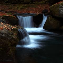 渓谷の紅葉 #5