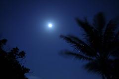 南の島の月