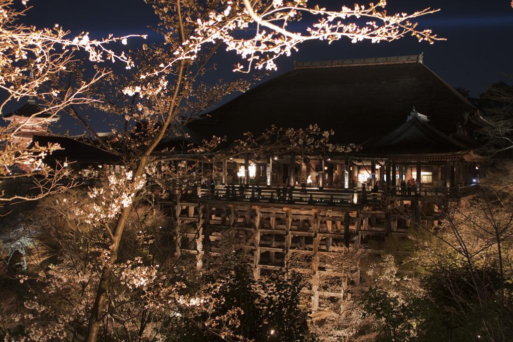 そうだ、京都いこう