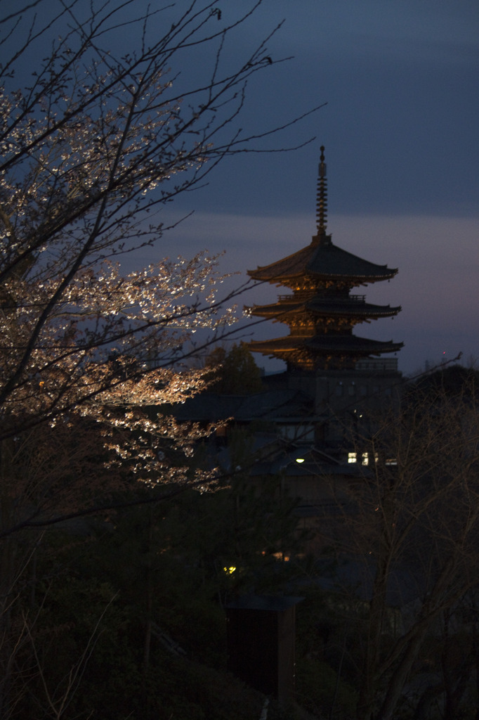 あ、京都だ