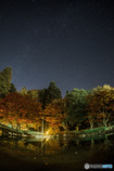 Autumn leaves and a starry sky