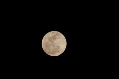 TAMRONのレフレックスで満月