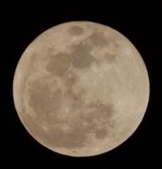 TAMRONのレフレックスで満月(トリミング)
