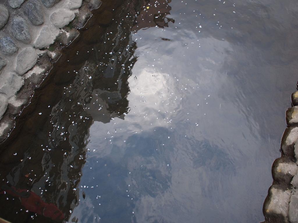 ざわめく水面