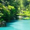 新緑のダム湖
